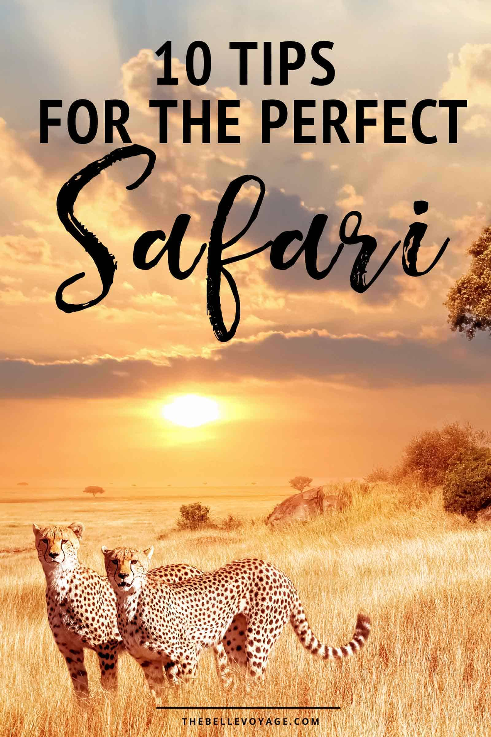 African safari tips | Things to know before your first African safari | Safari vacation tips | Planning the perfect safari honeymoon | Travel on an African safari